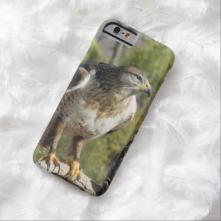Red Tailed Hawk iPhone 6 Case