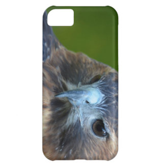 Red-tailed Hawk iPhone 5C Cases