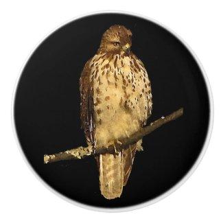 Red Tailed Hawk Ceramic Knob
