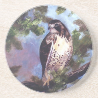 Red Tailed Hawk Coasters