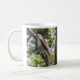 Red-tailed Hawk Coffee Mug