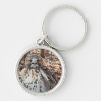 Red Tailed Hawk Doubled Keychain