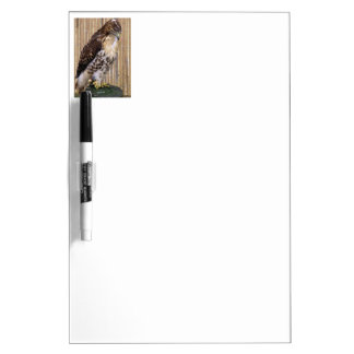 Red-Tailed Hawk Dry-Erase Whiteboards