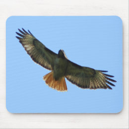 RED TAILED HAWK FLYING MOUSE PAD