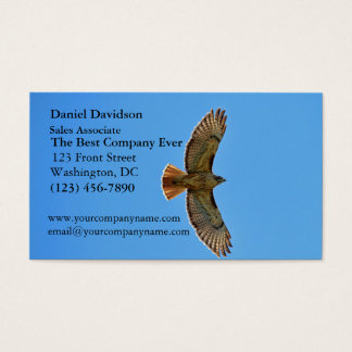 Red-Tailed Hawk in Flight Business Card
