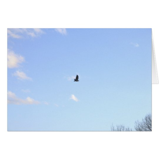 Red Tailed Hawk In Flight Card
