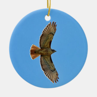 Red-Tailed Hawk in Flight Ceramic Ornament