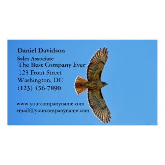 Red-Tailed Hawk in Flight Double-Sided Standard Business Cards (Pack Of 100)