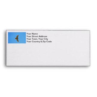 Red-Tailed Hawk in Flight Envelope