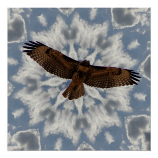 Red-Tailed Hawk in Flight Full Wing Span Poster