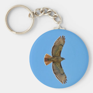 Red-Tailed Hawk in Flight Keychain