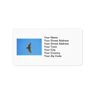 Red-Tailed Hawk in Flight Label