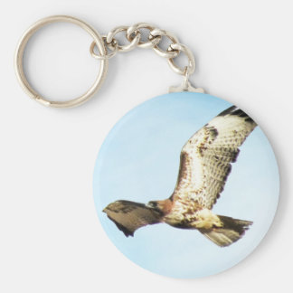 Red-tailed Hawk in Flight Photo Keychain