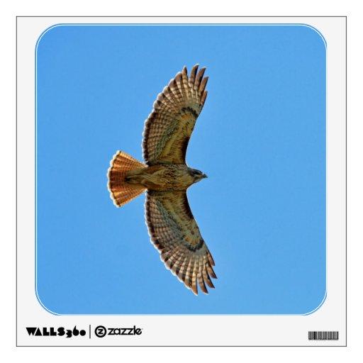 Red-Tailed Hawk in Flight Room Sticker