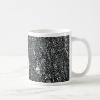 Red Tailed Hawk in full winter molt Coffee Mug