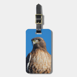 Red-Tailed Hawk in the Sun Tag For Luggage