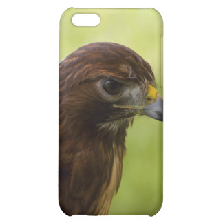 Red Tailed Hawk iPhone 5C Cover