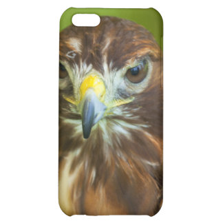 Red Tailed Hawk Iphone Cover iPhone 5C Cases