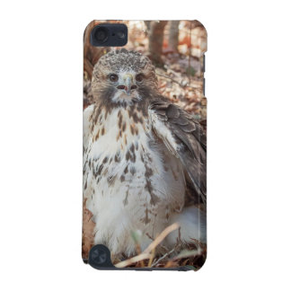 Red Tailed Hawk iPod Touch 5G Case