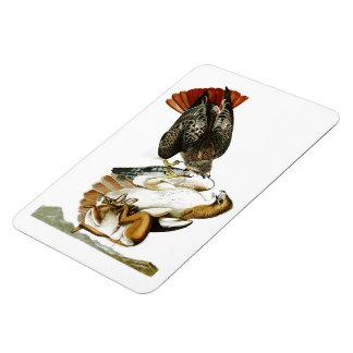 Red-tailed Hawk John James Audubon Birds America Rectangular Photo Magnet