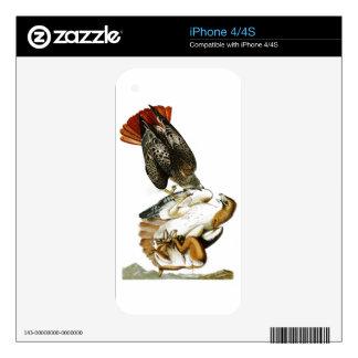 Red-tailed Hawk John James Audubon Birds America Skin For The iPhone 4S
