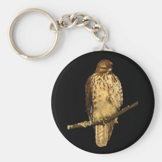 Red Tailed Hawk Key Chain