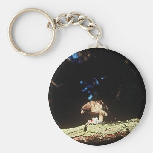 Red-tailed Hawk Keychains