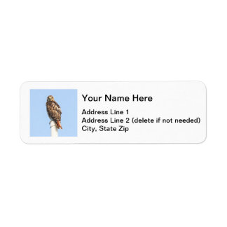 Red-tailed Hawk Label