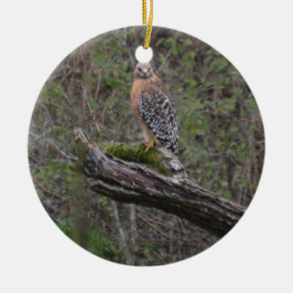 Red Tailed Hawk on Limb Ceramic Ornament