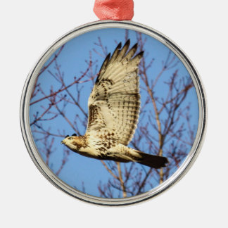 Red-tailed Hawk Ornaments