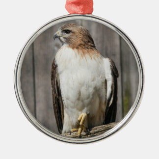 Red-tailed Hawk Christmas Ornaments