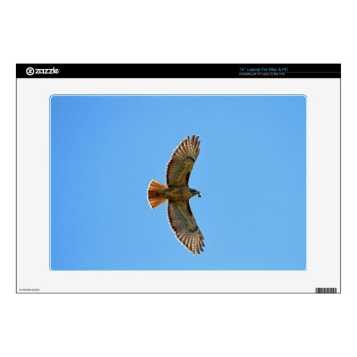 """Red-Tailed Hawk Photo 15"""" Laptop Skins"""