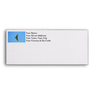 Red-Tailed Hawk Photo Envelope