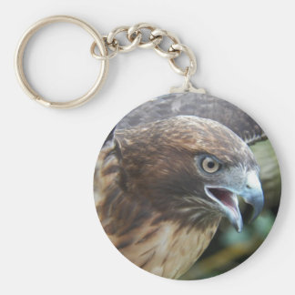 Red-tailed Hawk Photo Keychain
