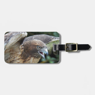 Red-tailed Hawk Photo Luggage Tag