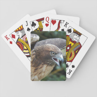 Red-tailed Hawk Photo Playing Cards