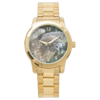 Red-tailed Hawk Photo Wristwatch