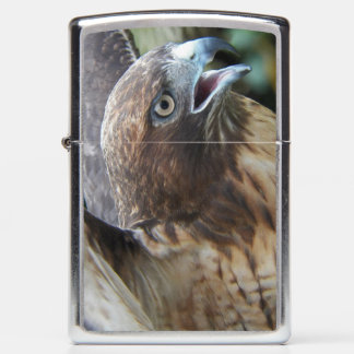 Red-Tailed Hawk Photo Zippo Lighter