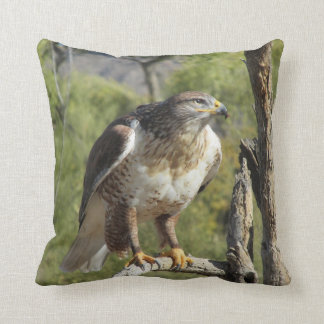 Red Tailed Hawk Pillow