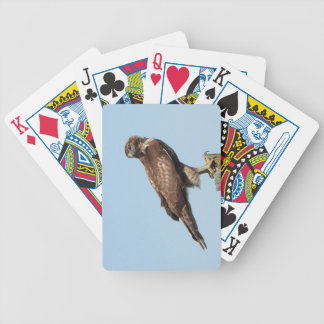 Red-tailed Hawk Playing Cards