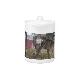 Red-tailed Hawk Porcelain Teapot 11oz.