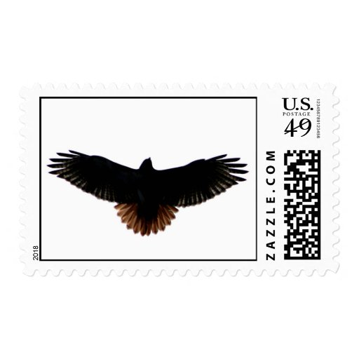 Red-tailed Hawk Postage Stamps