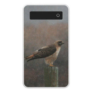 Red-tailed Hawk Power Bank