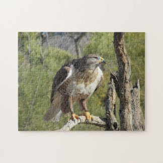 Red Tailed Hawk Puzzle