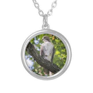 Red-tailed Hawk Round Pendant Necklace