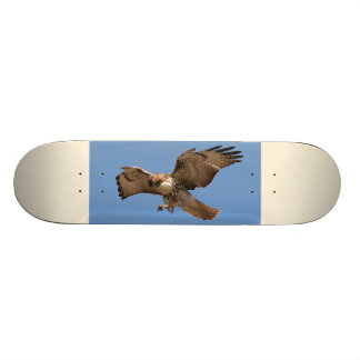 Red-Tailed Hawk Skateboard