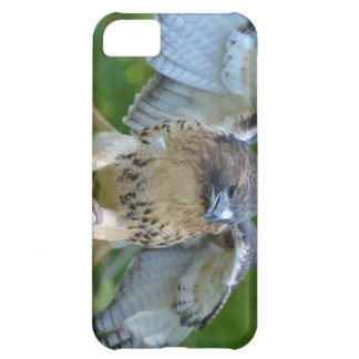 Red-tailed Hawk Spread Wings iPhone 5C Covers