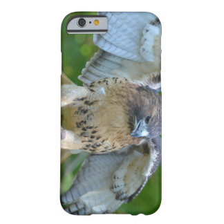 Red-tailed Hawk Spread Wings iPhone 6 Case