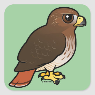 Red-tailed Hawk Square Sticker