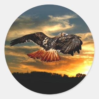 Red tailed hawk round sticker